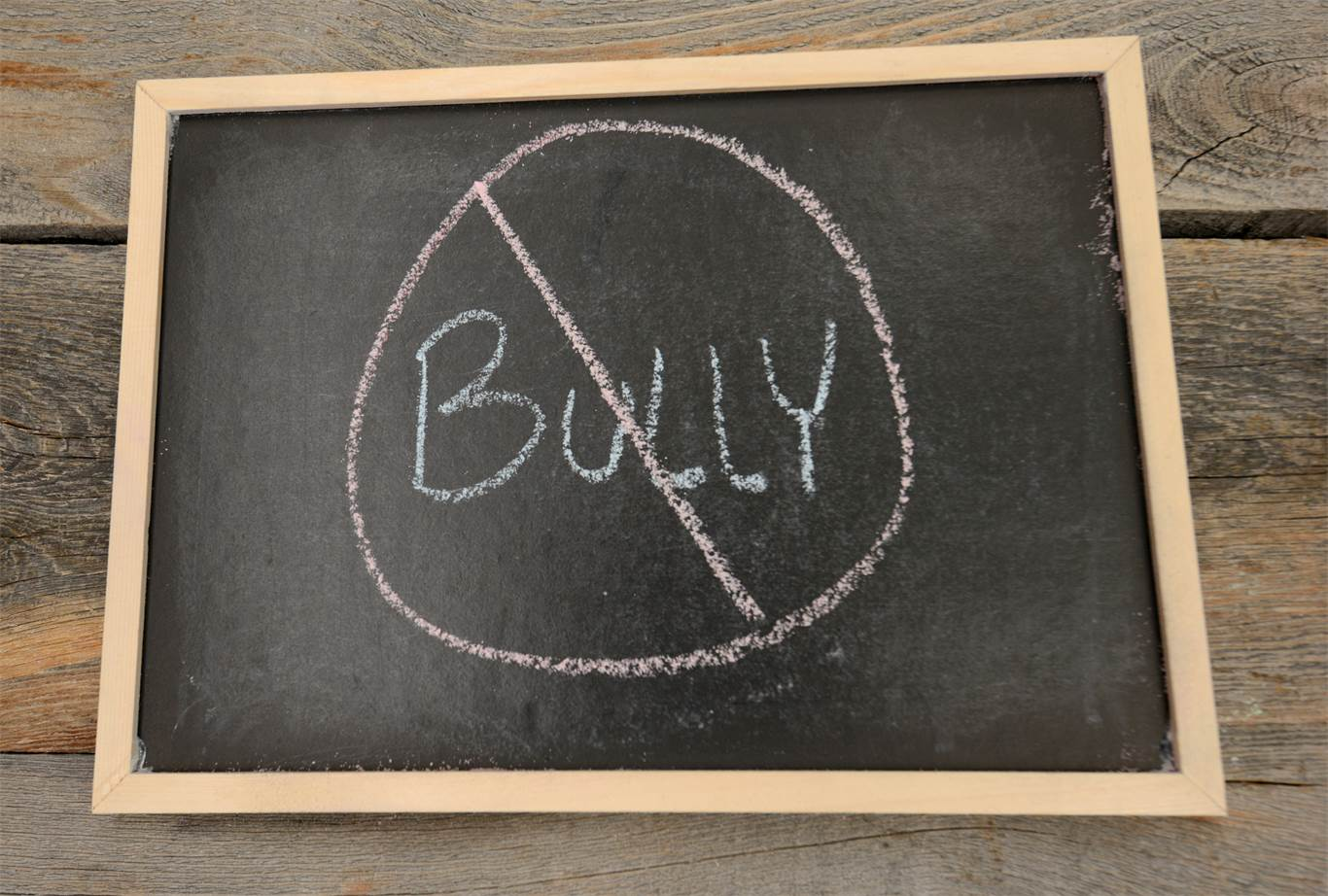 Bullying Prevention, Intervention and Follow up Plan