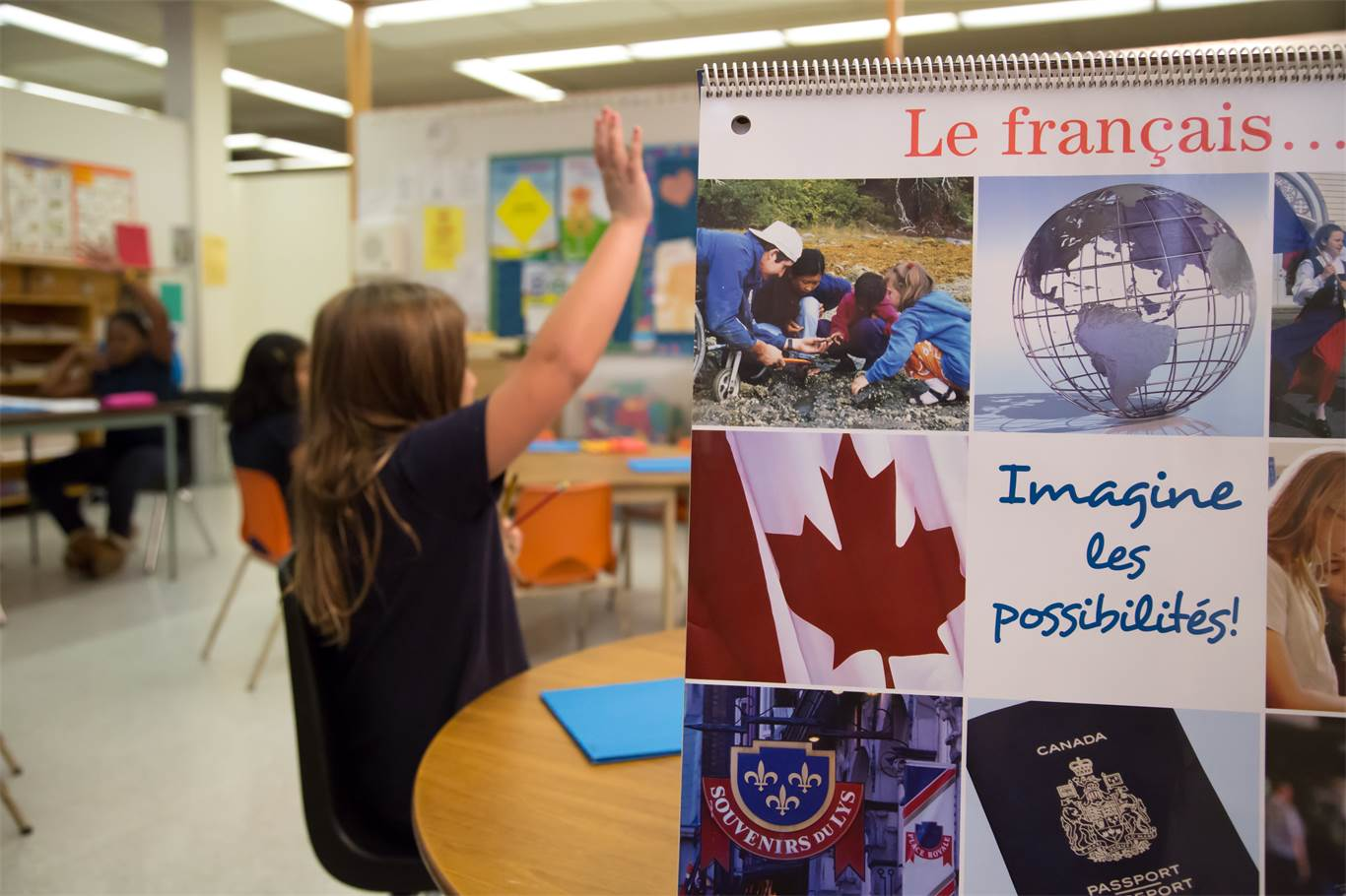 Overview of the Early French Immersion Program